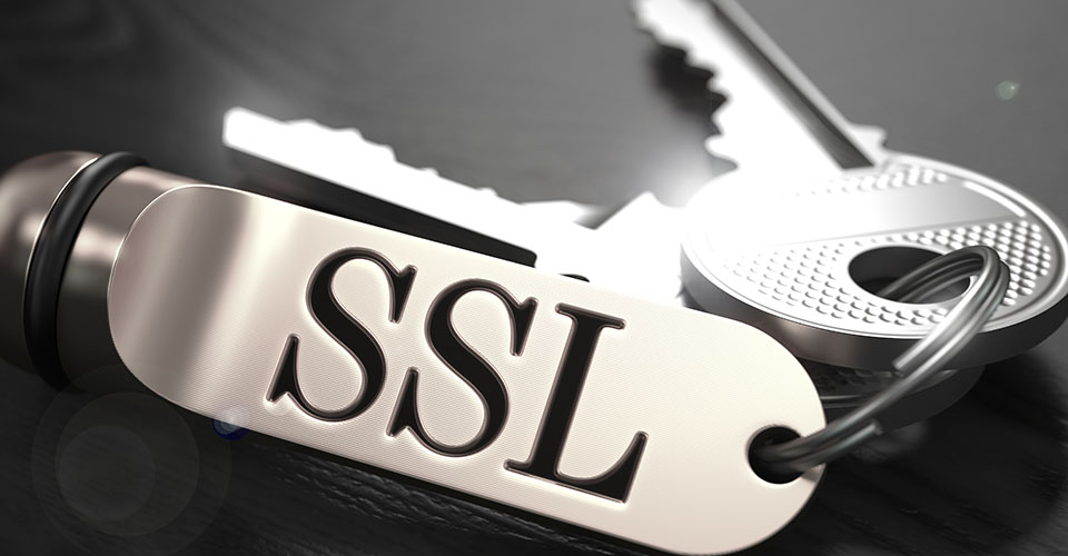 Staying secure in the crowded Internet: SSL