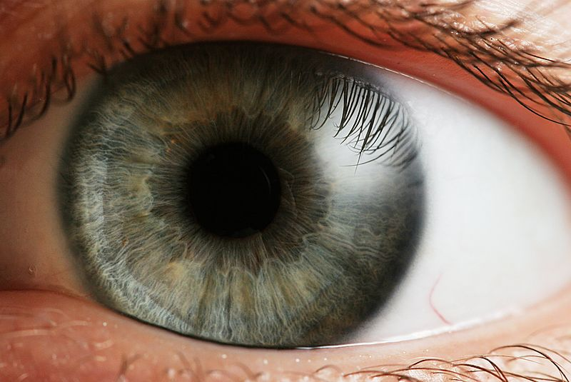 How biometrics work: Within the blink of an eye